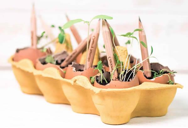 regalo ecológico para niños